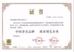 中国著名品牌 质量领先企业
