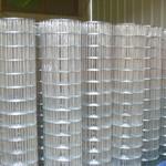 供应  改拔丝电焊网,涂塑电焊网