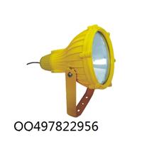 供应BTC8210-J250防爆投光灯