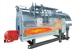 供应8吨燃气锅炉-2吨手烧燃煤蒸汽锅炉