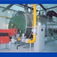 供应北京2吨燃油蒸汽锅炉,1吨燃煤锅炉价格