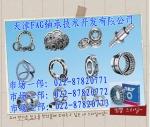 天津艾孚诶基轴承技术开发有限公司