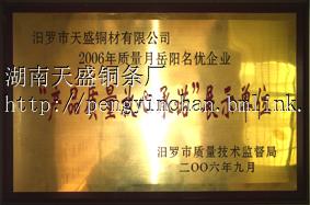 湖南天盛铜条厂