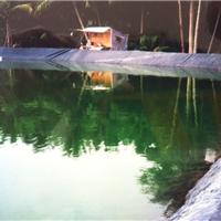 供应水产养殖膜藕池防渗膜