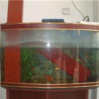 供应不怕水泡、鱼缸中的地板