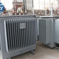S11-20/10油浸式电力变压器