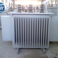 S11-250/10电力变压器技术说明