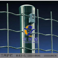 供应 波浪形护栏网|防护网