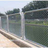 河北护栏网供应商电话 码头护栏网 价格图片