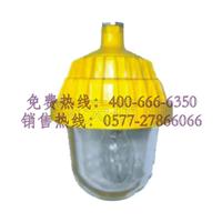 海洋王的BFS8801-J150防爆平台灯/促销价