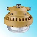 供应工厂免维护顶灯,电厂免维护平台灯