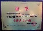 中国皮革10强产品证书
