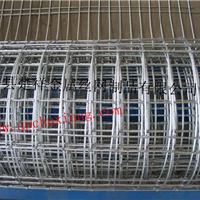供应楚祥pvc电焊网价格