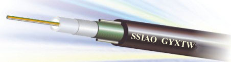 24芯光缆光纤