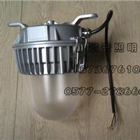 供应深圳海洋王的NFC9183LED 通道灯