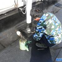 供应苏州屋顶补漏-做防水多少钱一个平方
