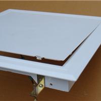 供应白色ABS一次成型暗式检修口