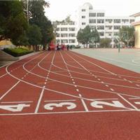 上海东方彩虹体育设施有限公司