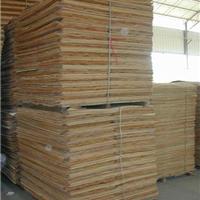 供应广西桉木面板厂家