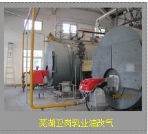 供应铜陵油改气工程