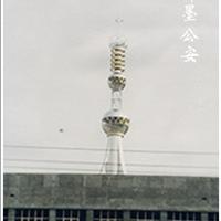 最好的楼顶装饰塔