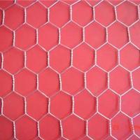 新型六角网批发 哪里卖六角网