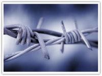 安平县刺绳护栏网厂家销售