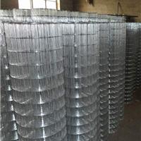 安平博乐电焊网厂