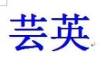 上海芸英实业有限公司