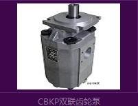 CBKP单联、双联、三联齿轮泵