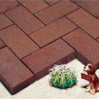 供应页岩烧结砖-巨兴建材生产的隔热好