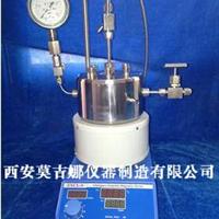 供应微型高压反应釜/加氢高压反应釜