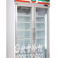 立式冰柜的特点