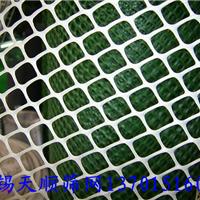 供应靖江常熟塑料平网无锡溧阳扬州塑料网