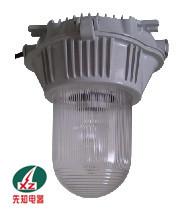 供应NFE9180防眩应急泛光灯l乐清厂家批发灯具
