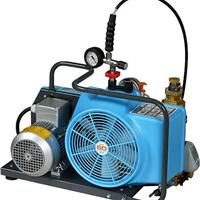供应进口现货空气充气泵