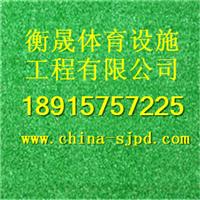 杭州塑胶跑道施工厂家