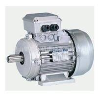 供应优价意大利NERI 电机T71C2