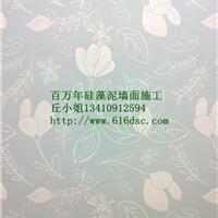 深圳硅藻泥施工