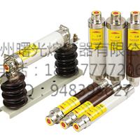 XRNT系列所有型号高压熔断器bussmann