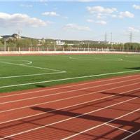 辽宁塑胶体育场地工程公司
