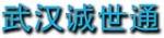 武汉诚世通机电工贸有限公司