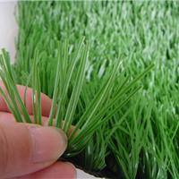 供應單絲網絲足球場人造草坪專業足球場施工