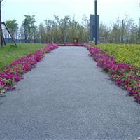 供应公园市政透水道路铺装――透水地坪