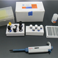 人神经肽Y(NP-Y)ELISA试剂盒