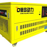 供应20KW汽油发电机厂家最新报价