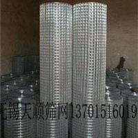 家禽笼专用电焊网片无锡泰兴异形点焊底网