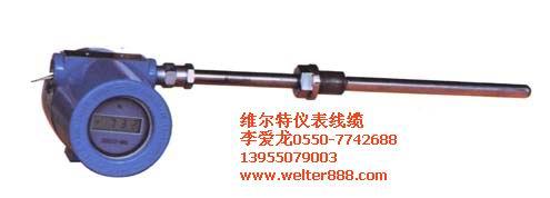 供应(维尔特牌)一体化防爆热电偶热电阻