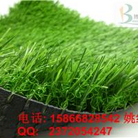 供应吉林四平幼儿园人造草|塑料人造草坪