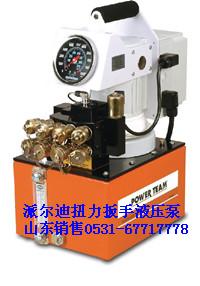 ����ҺѹŤ�����ֵ綯��PE55TWP-4-220
